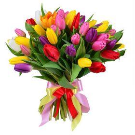 Букет 51 тюльпан